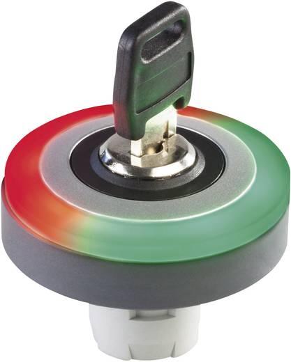 LED-Leuchtring Rot, Grün 24 V/DC, 24 V/AC Schlegel LR22K_24R_G 10 St.