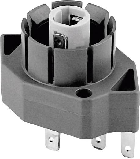 Kontaktelement 1 Wechsler 48 V DC/AC Schlegel CTL2_549 10 St.