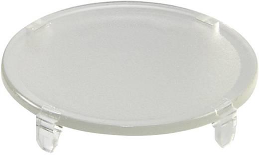Tastkappe rund, flach Transparent Schlegel TG22KL 10 St.