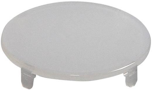 Tastkappe rund, flach Weiß Schlegel TG22WS 10 St.