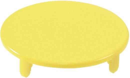 Tastkappe rund, flach Gelb Schlegel TG22GGB 10 St.
