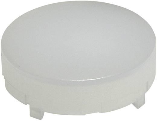 Tastkappe rund, hoch Weiß Schlegel KH23WS 10 St.