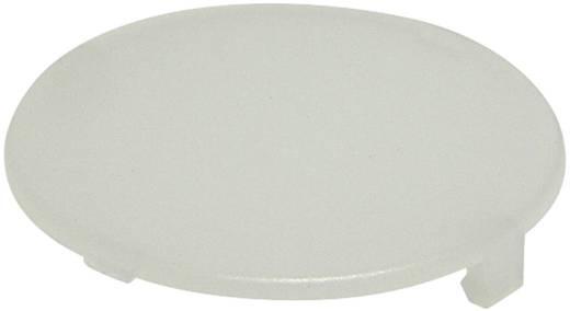 Tastkappe rund, flach Weiß Schlegel T20FWS 10 St.