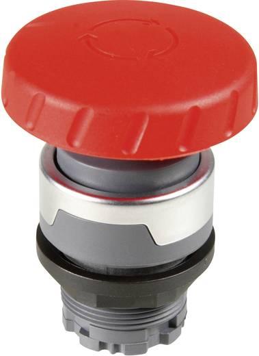 Not-Aus-Schalter Rot Drehentriegelung Schlegel RONDEX M RMCV 10 St.