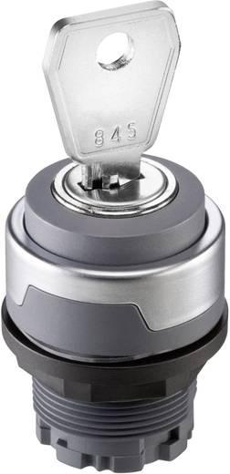 Schlüsselschalter Anthrazit 2 x 45 ° Schlegel RONDEX M RMCSSA23E 10 St.