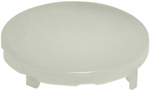 Kalotte rund, gewölbt Weiß Schlegel KF23WS 10 St.