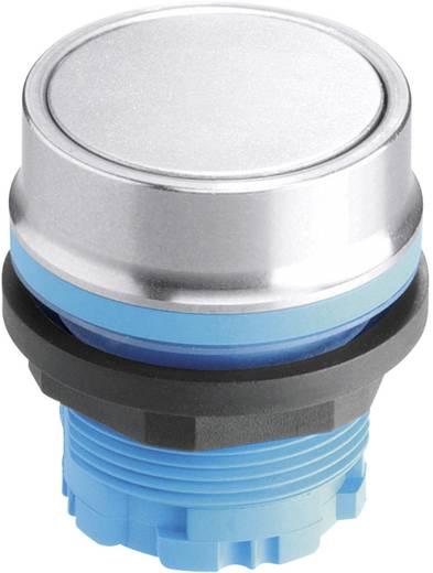 Drucktaster Blau Schlegel RVAT_BL 10 St.