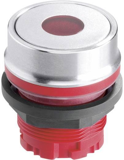 Drucktaster Transparent Schlegel RVATL_DG 10 St.