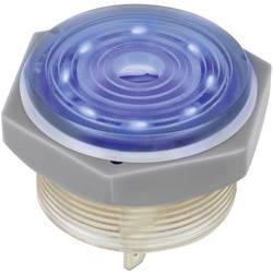 Image of 1164631 Piezo-Signalgeber Geräusch-Entwicklung: 95 dB Spannung: 12 V Dauerton 1 St.