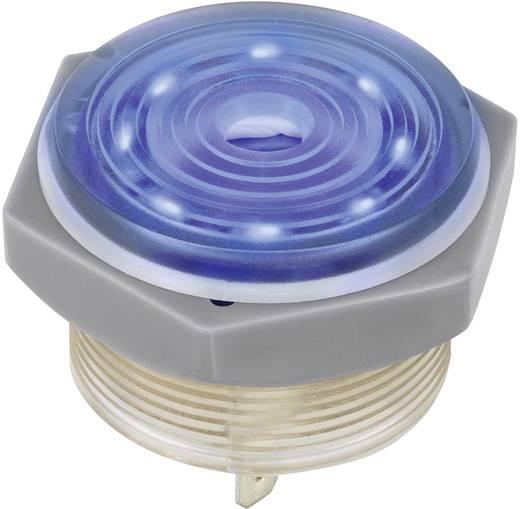 Piezo-Signalgeber Geräusch-Entwicklung: 95 dB Spannung: 12 V Dauerton 1164631 1 St.