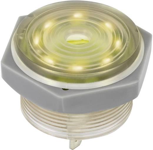 Piezo-Signalgeber Geräusch-Entwicklung: 95 dB Spannung: 12 V Dauerton 1164635 1 St.
