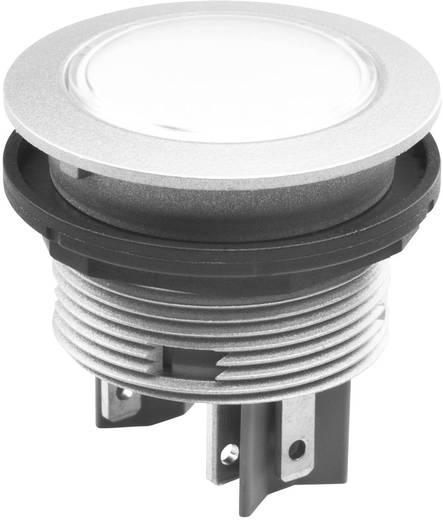 Drucktaster 42 V DC/AC Schlegel STLOI IP65/67 tastend 10 St.