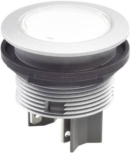 Drucktaster 42 V DC/AC Schlegel STII IP65/67 tastend 10 St.