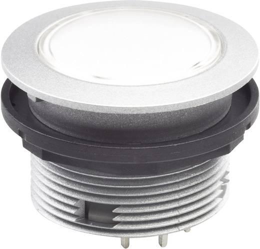 Drucktaster 42 V DC/AC Schlegel STLIIP IP65/67 tastend 10 St.