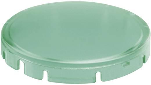 Tastkappe rund, gewölbt Grün Schlegel T22DRRGN 10 St.