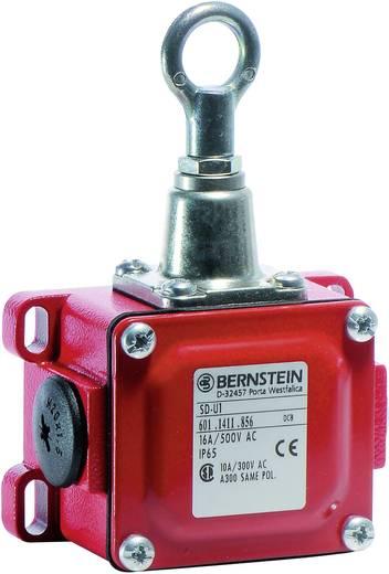Seilzugschalter 240 V/AC 16 A Seilzug mit Öse tastend Bernstein AG SD-U1 IP65 1 St.