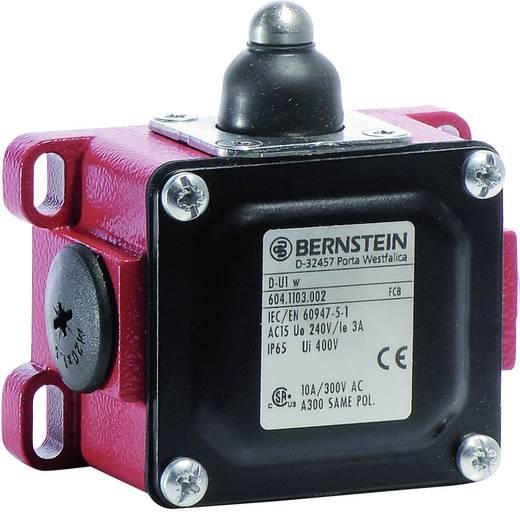 Endschalter 240 V/AC 10 A Stößel tastend Bernstein AG D-U1 W IP65 1 St.