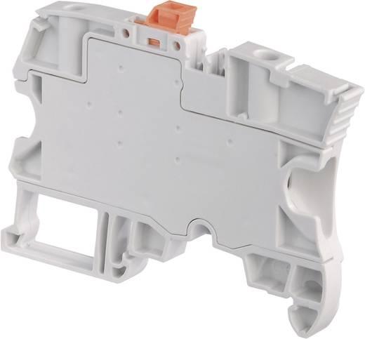 Trennklemme 6 mm Schrauben Belegung: L Grau ABB 1SNK 506 310 R0000 1 St.