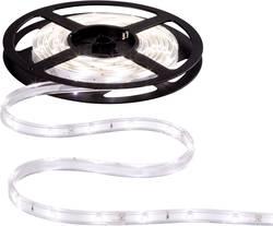 LED pásek Paulmann WaterLED, 3 m (70419)