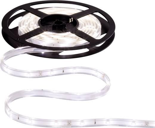 LED-Streifen-Komplettset mit Stecker 12 V 300 cm Neutral-Weiß Paulmann WaterLED 70419