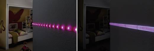 LED-Streifen-Erweiterung 12 V/DC 100 cm Neon-Lila Paulmann YourLED Deco 70436