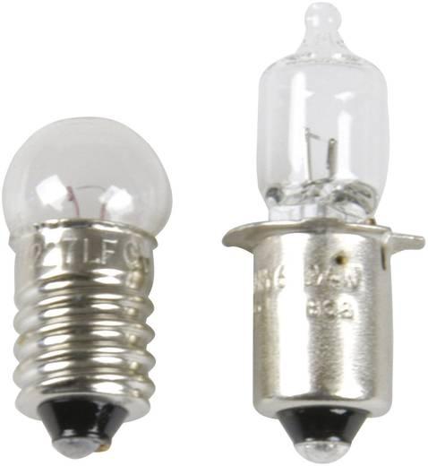 Fahrrad-Glühlampenset proFEX Halogen 10 LUX Philips Glühlampe Weiß