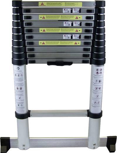 Aluminium Anlegeleiter Berger & Schröter Teleskop 60535 Silber 9 kg