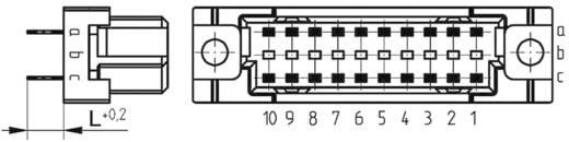 Federleiste 284318 Gesamtpolzahl 20 Anzahl Reihen 3 ERNI 1 St.