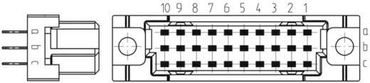 Federleiste 254320 Gesamtpolzahl 30 Anzahl Reihen 3 ERNI 1 St.