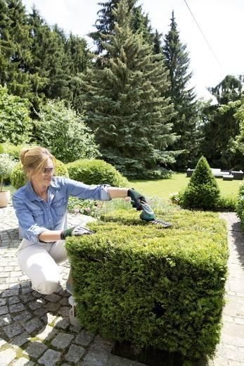 Akku Strauchschere inkl. Akku 3.6 V Li-Ion Bosch Home and Garden Isio