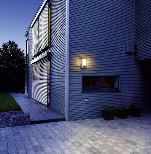 LED-Außenwandleuchte mit Bewegungsmelder 8 W Warm-Weiß Steinel L 610 4026 Warm-Weiß