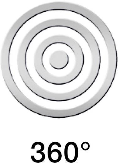 Außenwandleuchte mit Bewegungsmelder Halogen G9 80 W Steinel L 271 S 647919 Silber