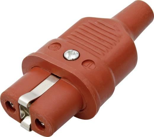 Warmgeräte-Steckverbinder Serie (Netzsteckverbinder) 344 Buchse, gerade Gesamtpolzahl: 2 + PE 16 A Rot Kalthoff 344Si 1