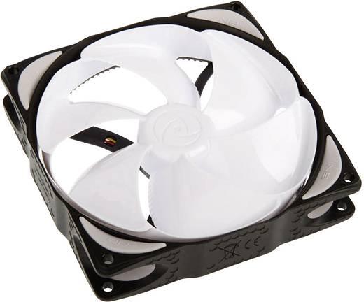 PC-Gehäuse-Lüfter NoiseBlocker NB-ELOOP B12-P Weiß/Schwarz (B x H x T) 120 x 120 x 25 mm