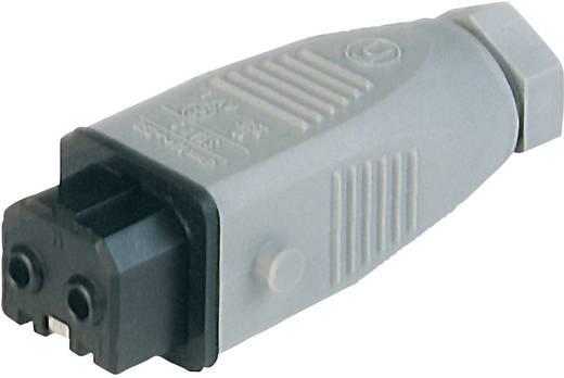 Netz-Steckverbinder Serie (Netzsteckverbinder) STAK Buchse, gerade Gesamtpolzahl: 2 + PE 16 A Grau Hirschmann STAK 2 1