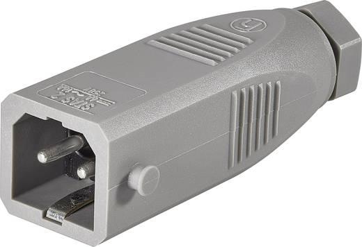 Netz-Steckverbinder STAS Serie (Netzsteckverbinder) STAS Stecker, gerade Gesamtpolzahl: 2 + PE 16 A Grau Hirschmann STAS