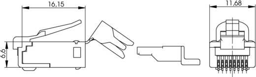 STX RJ45-Stecker Stecker, gerade Pole: 8P8C J80026A0000 Glasklar Telegärtner J80026A0000 1 St.