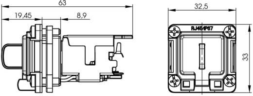 STX V6 RJ45-Flanschset Variante 6 Chassisbuchse, Einbau Pole: 8P8C J00020A0481 Lichtgrau Telegärtner J00020A0481 1 St.