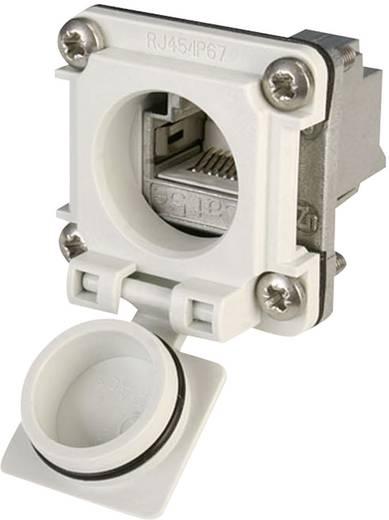 STX V6 RJ45-Flanschset Variante 6 Kupplung, Einbau Pole: 8P8C J00020A0482 Lichtgrau Telegärtner J00020A0482 1 St.