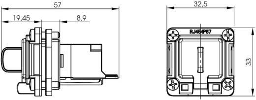 STX V6 RJ45-Flanschset Variante 6 Kupplung, Einbau Pole: 8P8C J00020A0483 Lichtgrau Telegärtner J00020A0483 1 St.