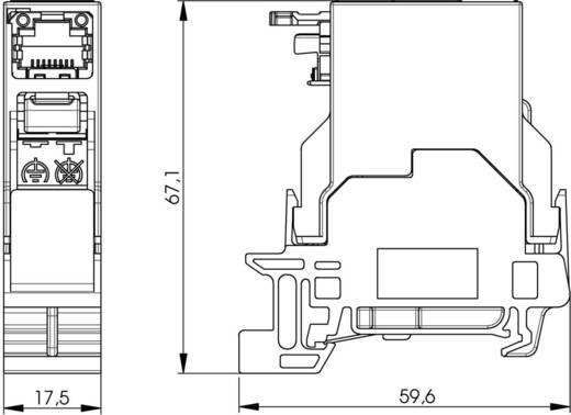 Tragschienen-Verbinder RJ45 Buchse, Einbau Pole: 8P8C J80023A0001 Lichtgrau Telegärtner J80023A0001 1 St.