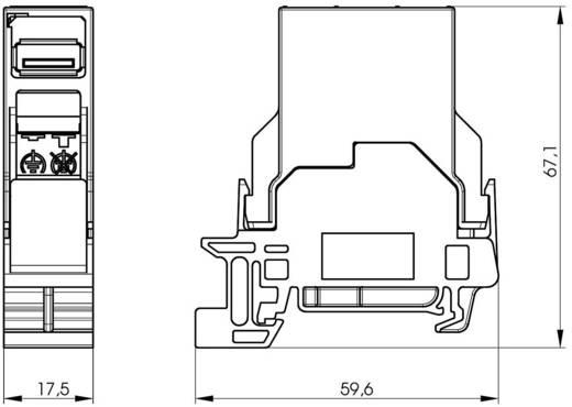 Tragschienen-Verbinder USB 2.0 Kupplung, Einbau J80023A0006 Lichtgrau Telegärtner J80023A0006 1 St.
