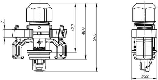 RJ45-Steckerset Variante 6 Stecker, gerade Pole: 8P8C J00026A0150 Lichtgrau Telegärtner J00026A0150 1 St.
