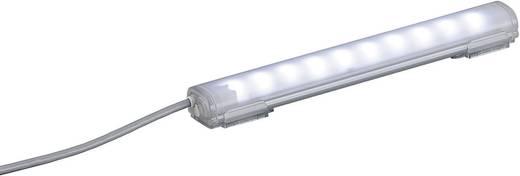 Signalleuchte Patlite CLA2S-24-CD-30 Tageslicht-Weiß Tageslicht-Weiß 24 V/DC