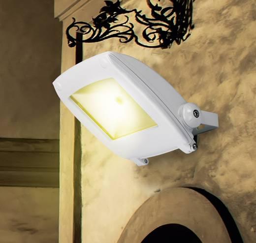 LED-Außenstrahler 10 W Kalt-Weiß Renkforce SPC10H2 KW Weiß