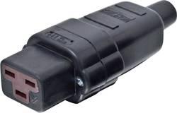 Síťová IEC zásuvka C19 Kalthoff T 70, 250 V, 16 A, černá, 2050002114210