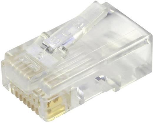 Modular-Stecker ungeschirmt für Flachkabel Stecker, gerade Pole: 8P8C 937-SP-3088 Glasklar BEL Stewart Connectors 937-S