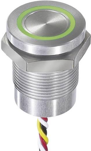 Sensortaster 24 V 0.2 A APEM CPB2110000KGSS IP68, IP69K tastend 1 St.