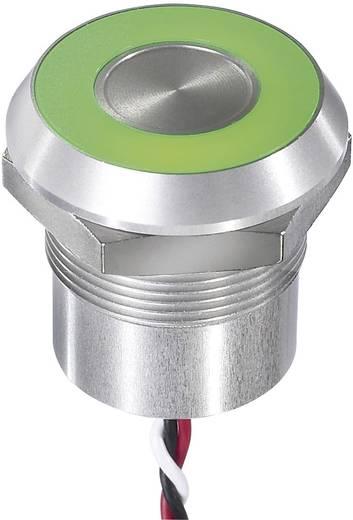 Sensortaster 12 V 0.2 A APEM CPB3110000NGSC IP68, IP69K rastend 1 St.