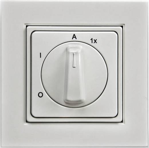 Arnold Elektrotechnik 2907.2900.3 Außenlichtschalter IP20 Reinweiß